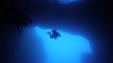 Cathedral Cave – Morze Śródziemne – Gozo Malta