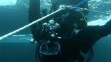 Kurs nurkowania podlodowego